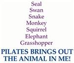Pilates Animal