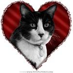 Tuxedo Cat Valentine