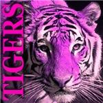 Tigers Sinful Cyan