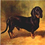 Antique dog prints and art digitally remastered