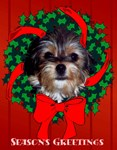 Season's Greetings Shaggy Dog Wreath