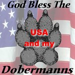 God Bless The USA and my Dobermanns