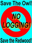 No Logging!