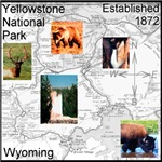 Yellowstone NP Illustrated Map