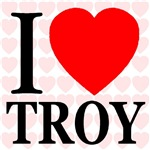 I Love Troy 2008 Edition