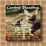 Canine Blessing for home, family, dogs, cats