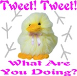 Tweet Tweet What Are You Doing?