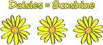 Daisies equal Sunshine!