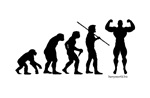 Evolution of Studs