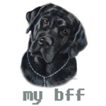 New Design, my bff Black Labrador Retriever