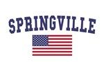 Springville US Flag