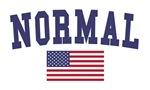 Normal US Flag