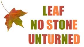 LEAF NO STONE UNTURNED
