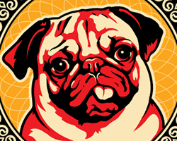 PUGFEST 07