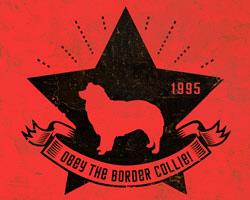 Border Collie Star Icon