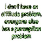 Attitude Perception