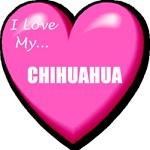 I Love My Chihuahua