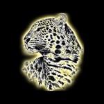 Wildlife Black T-Shirts