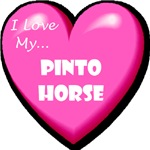 I Love My Pinto Horse
