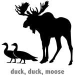 Funny Wild Animals