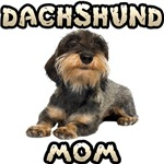 Wirehaired Dachshund Mom