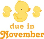 Duck Baby November Maternity Announcement