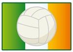 IRISH VOLLEYBALL PLAYER T-SHIRTS