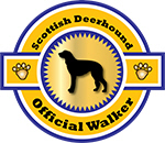 Scottish Deerhound Official Walker