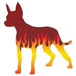 Mexican Hairless Dog Flames