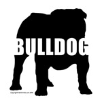 Black Bulldog