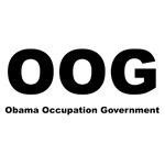Obama Occupation Government