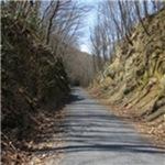 Bartram Rail Trail