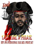 Pirate and Ship