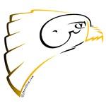 Shaheen (Falcon in Persian)