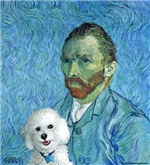Vincent's Bichon