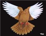 Domestic Flight Pigeon
