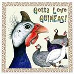 Gotta Love Guineas!