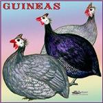 Three Guineafowl