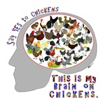 Brain On Chickens