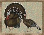 Turkeys Standard Bronze Pair