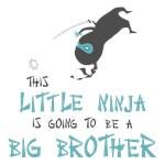 Ninja Big Brother Gifts