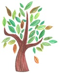 Tree Illustration Gifts