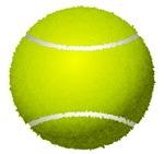 Fuzzy Tennis Ball