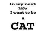 In my next life I want to be a CAT!