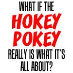 Hokey Pokey Really Is What's It's About