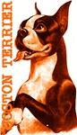 Vintage Boston Terrier Orange Wave