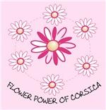 pinnk flower