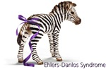 Zebra with Ribbon on Tail