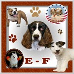 DOG BREED E-F
