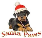 Rottweiler Puppy Santa Paws